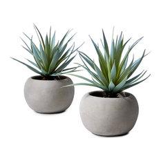 """Sword Grass In Grey Cement Pot, Set of 2,  6""""x8"""""""