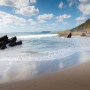 Blue Monkey Cornwall's photo