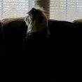 Arrow Home Services, LLC's profile photo