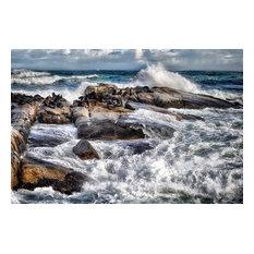 "Pixtury ""Seal Island"", Art Poster, 30x45 cm"
