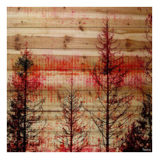 """""""Red Enchanted Forest"""" Print on Natural Pine Wood, 32""""x32"""""""