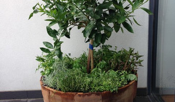 Potted Plant Service