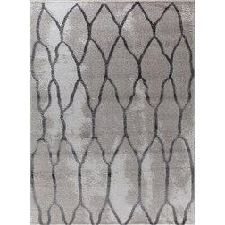 Contemporary Area Rugs by Oak Idea Corporation
