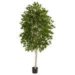 """Wrought Iron Haven-NN - Artificial Tree -6 Foot Birch Tree - Artificial Tree -6 Foot Birch Tree :: The 6' birch Artificial Tree brings the outdoors into your waiting room or office. One strong trunk branches out into multiple small leaves in a natural, realistic looking way. Requires no maintenance.   Poly/Silk trees care: may be spot cleaned or dusted with a damp cloth.   Product size:6'H x 36""""W x 36""""D. Trunks: 1 Leaves: 1890 Fake Trees Pot size: H:5.5"""" x W:6.5"""" x D:6.5"""" Artificial Trees  Product Weight:19.5 Lbs"""
