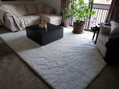 Put An Area Rug On Top Of Carpeting