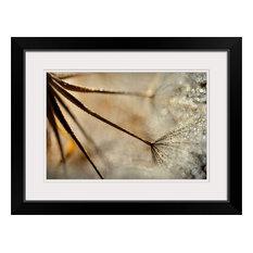 """Sparkle "" Black Framed Art Print, 26""x20""x1"""