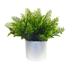 Minimalist Mixed Leather Fern Arrangement