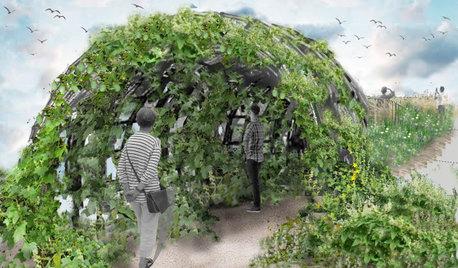 Выставка садов Moscow Flower Show — виртуальная в 2020-м