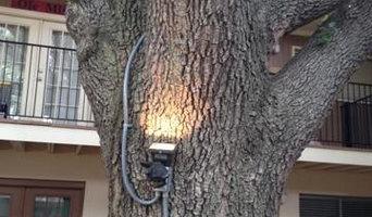 Residential Lanscape Lighting