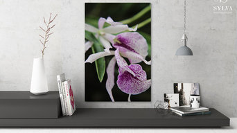 Purple and White Orchid Flowers Gallery Wrap Fine Art Canvas