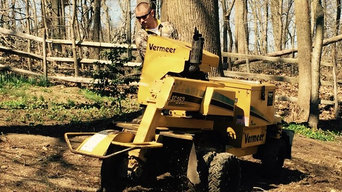 Stump Grinding on a Hill in Aston Pa Delaware County