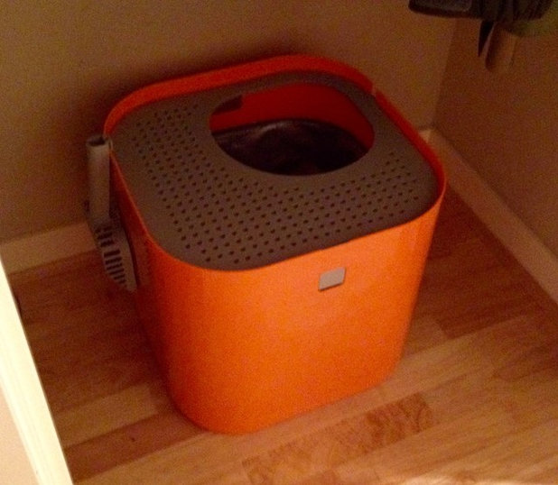 Options (and Opinions) Galore for Cat Litter Boxes