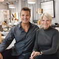 The Sarasota Collection Home Store's profile photo