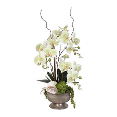 Real Touch Green Orchids and Succulents With Seashells in Pewter Metal Pot