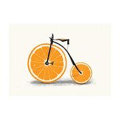 Orange Bicycle Wall Sticker Decal, Vitamin by Florent Bodart, Medium