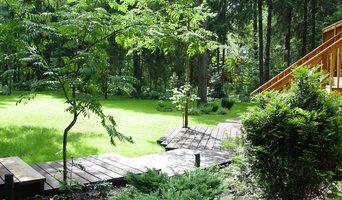 Сад на лесном участке