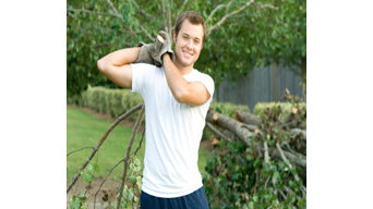 Winds of Change Tree Service
