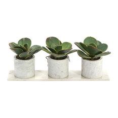 John Richard Modern Classic Marble Succulents Natural Marble Base Plant