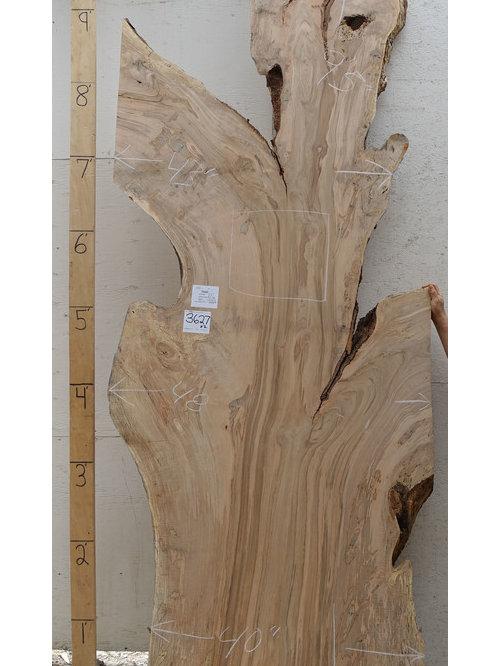 Maple natural edge wood slabs for Maple wood slab