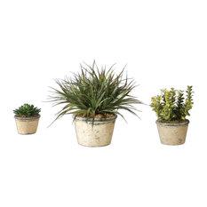 La Costa 3-Piece Greenery Planter Set
