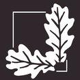 Signature Innovations LLC's profile photo
