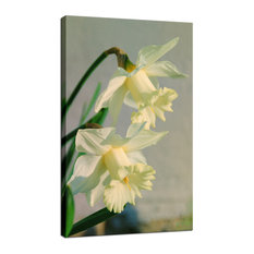 """Colorized Daffodils"" Floral Nature Photography Fine Art Canvas Wall Art Print,"