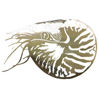 Nautilus Stainless Steel Wall Hangings