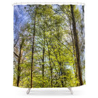 society6 curtain
