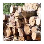 Alaska Interior Timber Products's photo