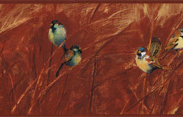 Birds Wallpaper Border, Roll