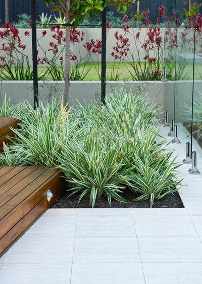 Contemporáneo by Cultivart Landscape Design