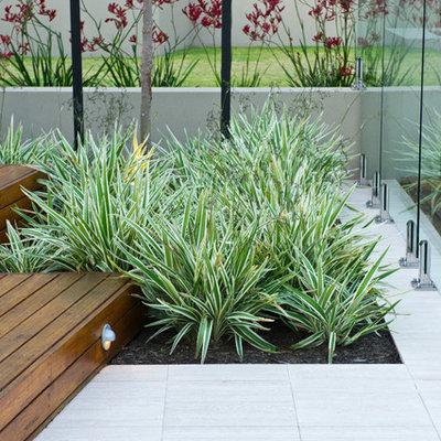 Home design - mid-sized contemporary home design idea in Perth