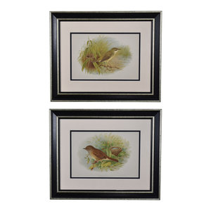 Original Vintage 1896 English Bird Prints, Framed, Set of 2