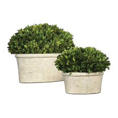 Oval Domes Preserved Boxwood, Set of 2 By Designer Constance Lael-Linyard
