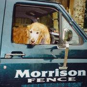 Morrison Fence's photo