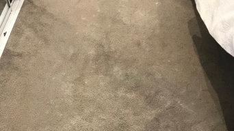 Carpet Cleaning Mooloolaba