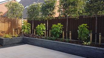 Modern Low maintenance garden