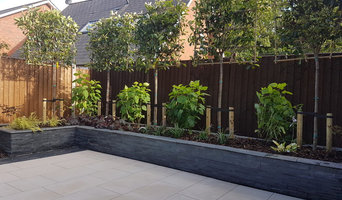 Modern Low maintenance garden