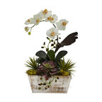 Orchid and Succulent Garden With White Wash Planter