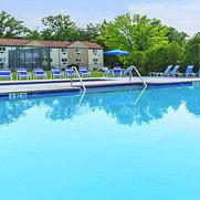 Arlington Pool Service's photo