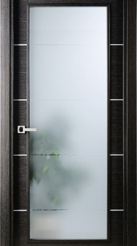 Modern Interior Single Door Italian Black Apricot With Frosted Glass   Interior  Doors