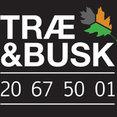 TRÆ & BUSKs profilbillede