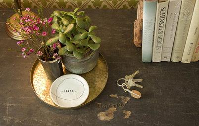 観葉植物をテーブルに飾るためのヒント