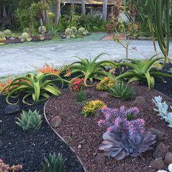La Costa Nursery Encinitas Ca