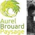 Photo de profil de Aurel Brouard Paysage