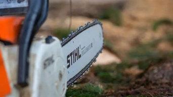Surecut Tree Service