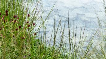 Cloudy Bay Garden- Chelsea Flower Sho