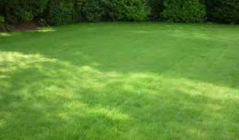 Lawn Fertilization and Nutrition