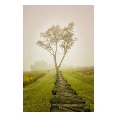 """Landscape Photograph """"Calming Morning"""" Rural Unframed Wall Art Print, 20""""x24"""""""