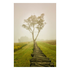 """Wall Art Print Landscape Photograph Calming Morning Rural Unframed, 20""""x24"""""""